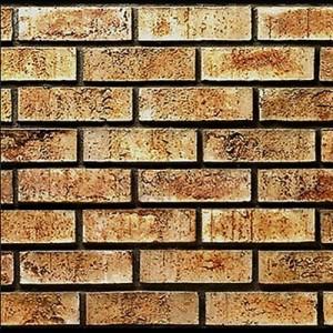 Brick Veneer Twin Cities